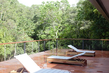 Rainforest Deck